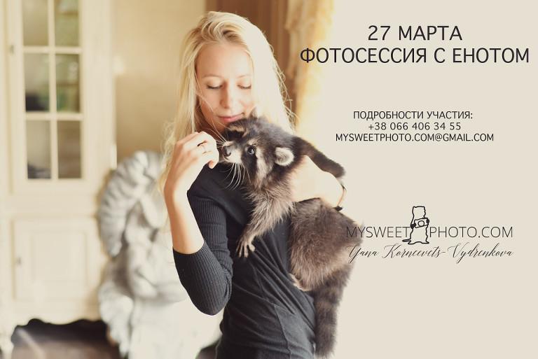 | фотосессия с енотом Киев | фотограф-анималист Киев | подарочный сертификат на фотосессию с енотом Киев |